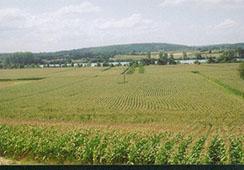Agriculture de l 39 ain chambres d 39 agriculture auvergne - Chambre agriculture alpes maritimes ...