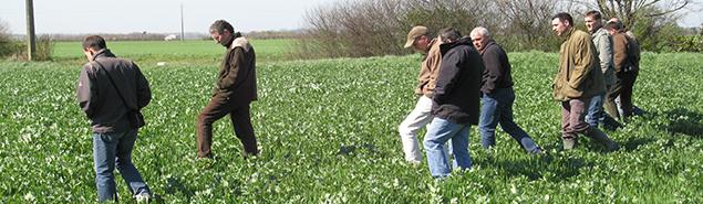 Le programme r gional de d veloppement agricole chambres - Chambre d agriculture d auvergne ...