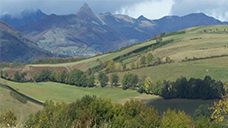 Agriculture du cantal chambres d 39 agriculture auvergne - Chambre d agriculture d auvergne ...